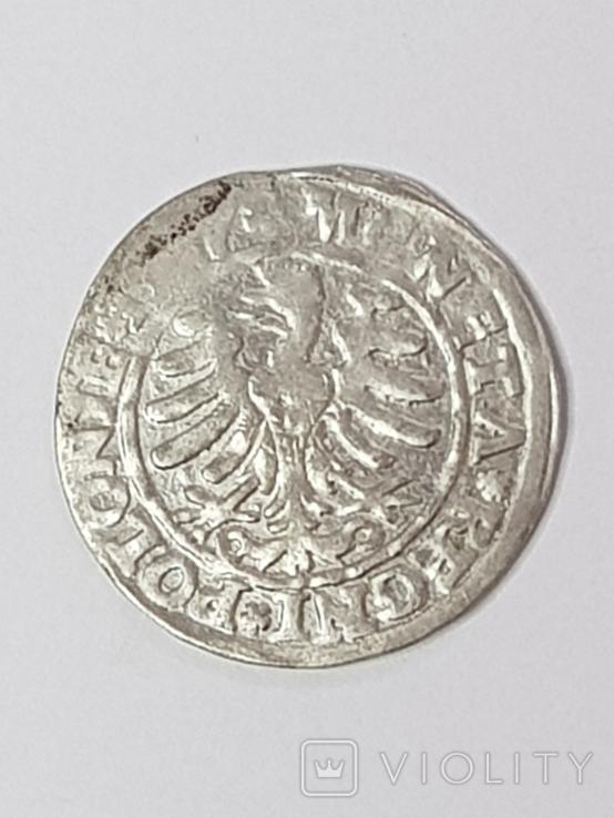 Сігізмунд1гріш,1527р., фото №3
