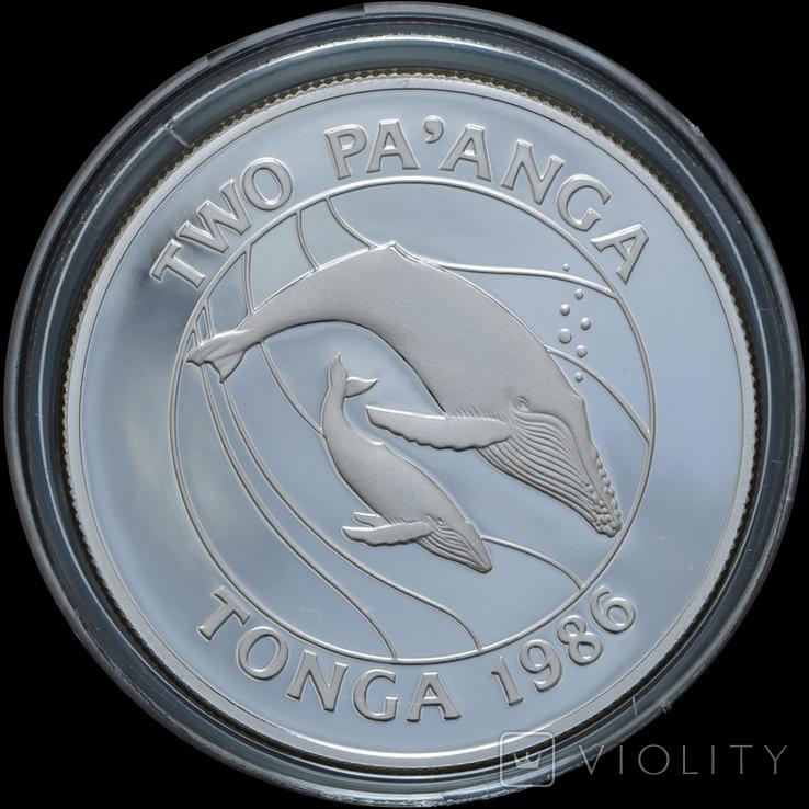 2 Паанга 1987 Киты - 25 лет Всемирному фонду дикой природы (0.925, 28.28г), Тонга, фото №2
