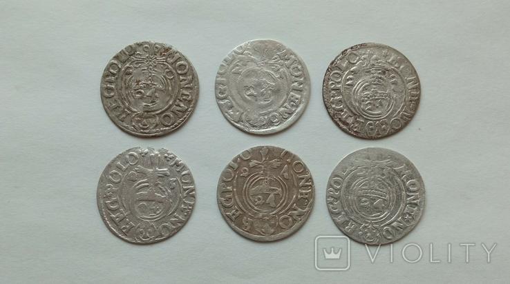 Півторак Сігізмунда III Вази 1620-1625рр. 6шт., фото №4