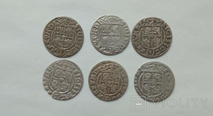 Півторак Сігізмунда III Вази 1620-1625рр. 6шт., фото №6