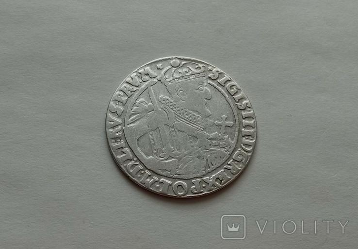 Орт 1623г. Сиг. ІІІ Ваза №3, фото №4