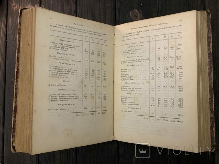 1906 Диететика. Руководство к диетическому лечению в 2 томах Комплект, фото №6