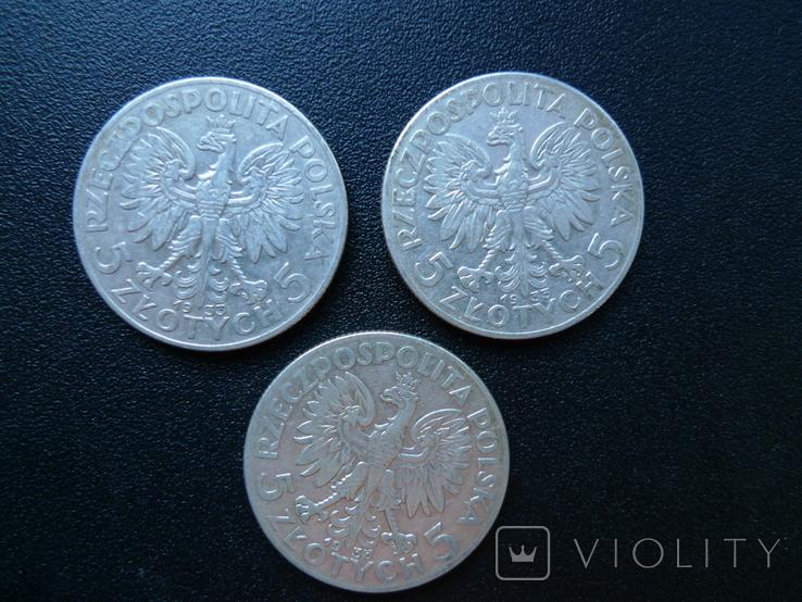 5 злотых 1933 12 штук, фото №6