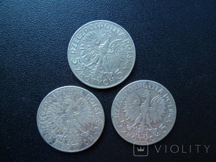 5 злотых 1933 12 штук, фото №8
