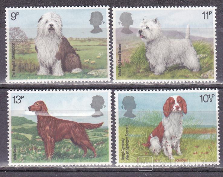 Великобритания Собаки MNH