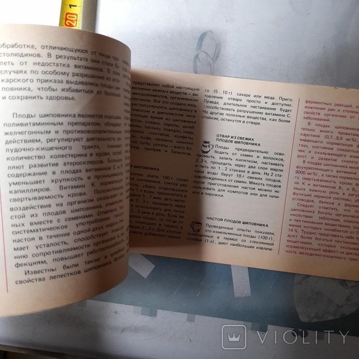 """Кощеев """"Нипитки из дикорастущих ягод и грибов"""" 1991р., фото №7"""