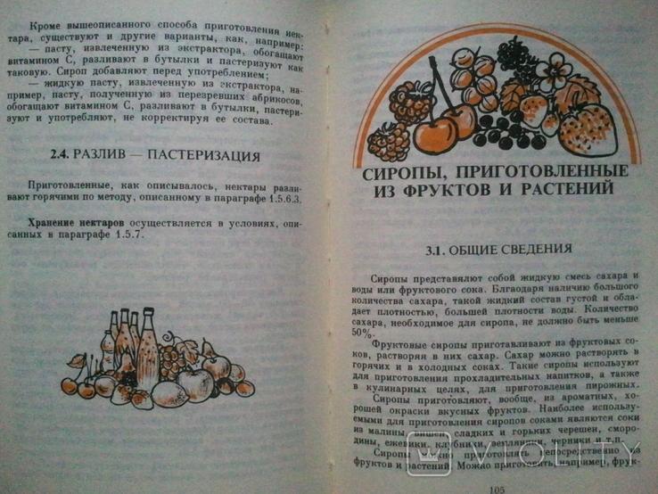 Фруктовые соки и прохладительные напитки домашнего приготовления., фото №6