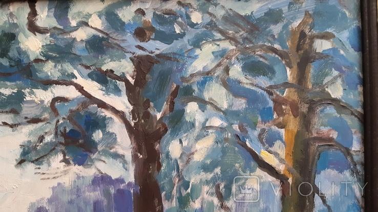 В.Демидюк. Зимовий пейзаж, фото №6