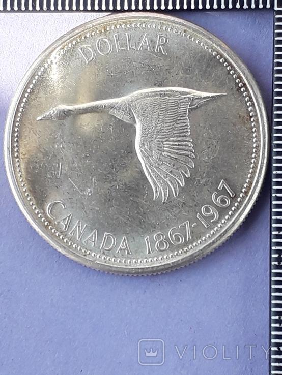 1 доллар, Канада, 1967 год, серебро, 0.800, 23.32 гр., 100 лет Конфедерации Канада, фото №3