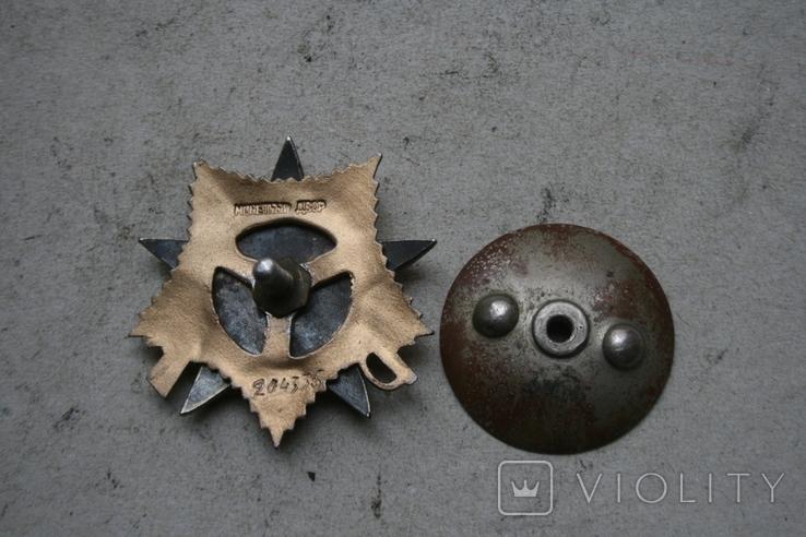 Орден ов 1 степени. штрал і сим копія, фото №9