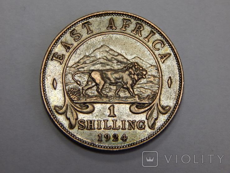 1 шиллинг, 1924 г Британская Африка, фото №2