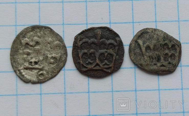 Денарії (Варненчика, Ягеллончика,Ольбрахта), фото №4