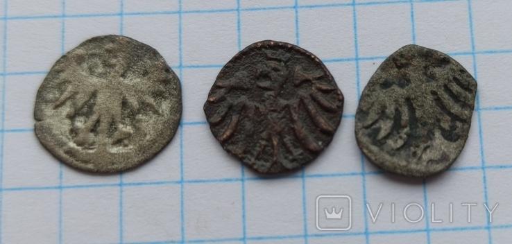 Денарії (Варненчика, Ягеллончика,Ольбрахта), фото №7