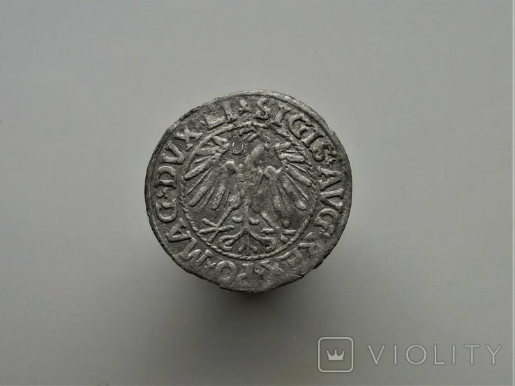Литовский Полугрош 1546 г., фото №3
