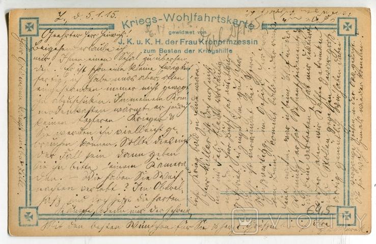 Германская Империя. 1915. Сыновья Кронпринца, фото №4