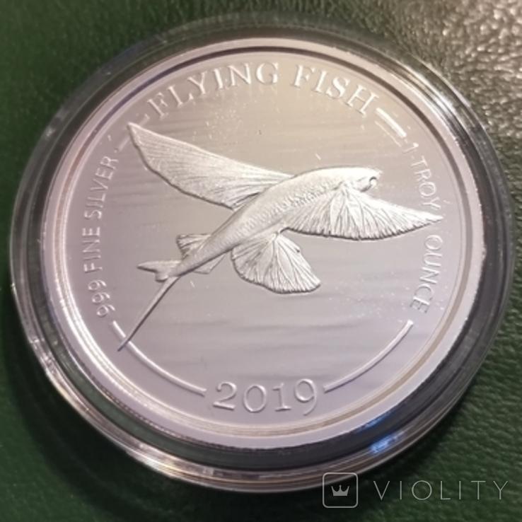 1 доллар 2019 р.Барбадос,Літаюча риба, фото №3