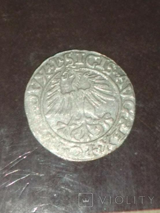 Полугрош 1561, фото №5