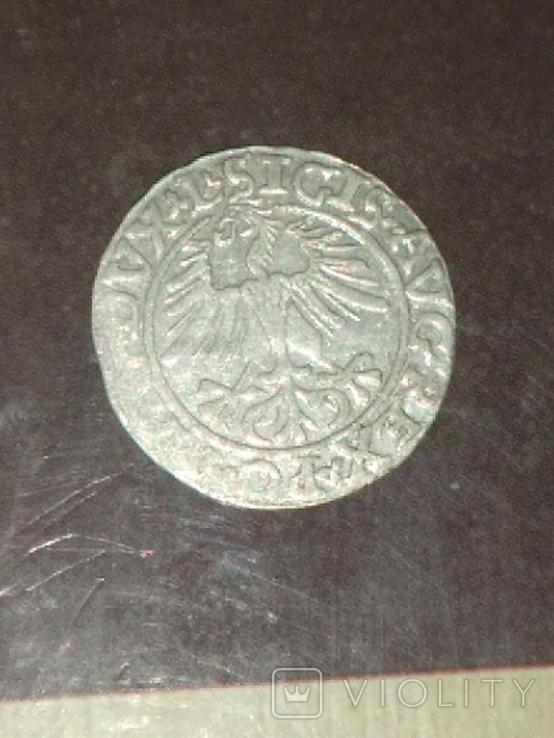 Полугрош 1561, фото №6