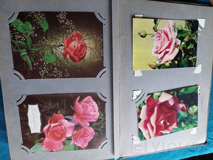 """Альбом с открытками """"Цветы"""" времен СССР, фото №5"""