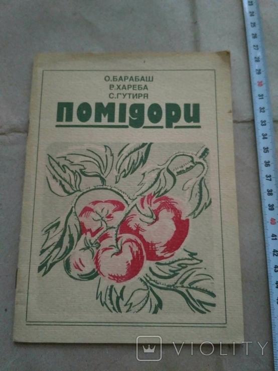 Помідори 1993р, фото №2