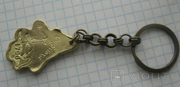 Брелок у вигляді листка-дендропарк Софіївка, фото №2