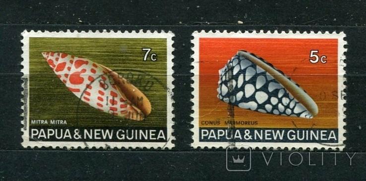 Папуа-Новая Гвинея, морская фауна, ракушки. 1968 г.