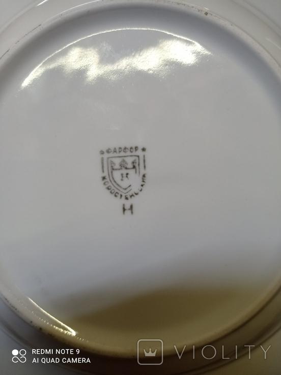 Набор з 12 тарілок Коростенський фарфор, фото №9