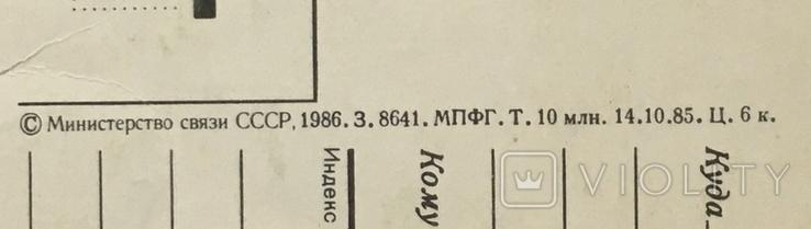Открытка чистая: С Днём рождения! (ёжик, белочка, цветы) / худ. В. Зарубин, 1986, фото №5