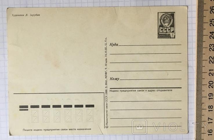 Открытка чистая: С Днём рождения! (ёжик, белочка, цветы) / худ. В. Зарубин, 1986, фото №6