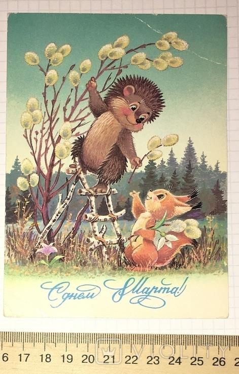В. Зарубин, открытка чистая: С Днём 8 марта! (ёжик, белочка, цветы), 1987, фото №2