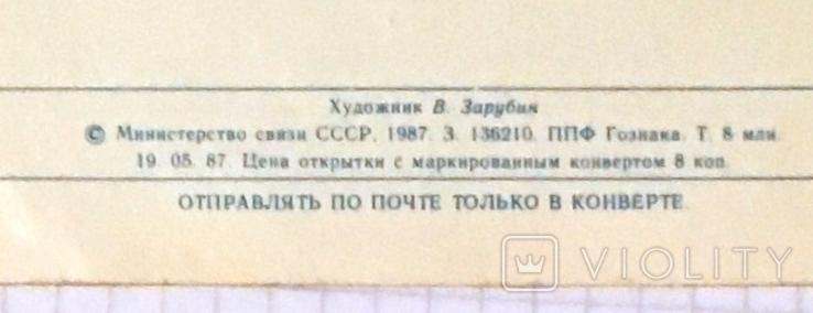 В. Зарубин, открытка чистая: С Днём 8 марта! (ёжик, белочка, цветы), 1987, фото №4