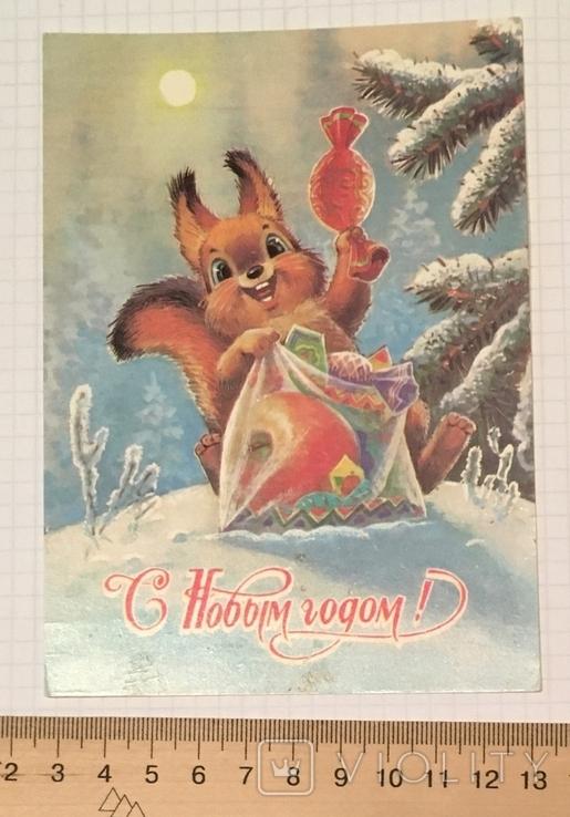В. Зарубин, открытка чистая: С Новым годом! (белочка, конфета, подарок), 1989, фото №3