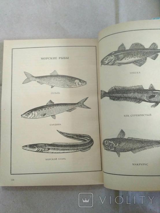Рыбние блюда М.П. Закотнова 1987р, фото №5