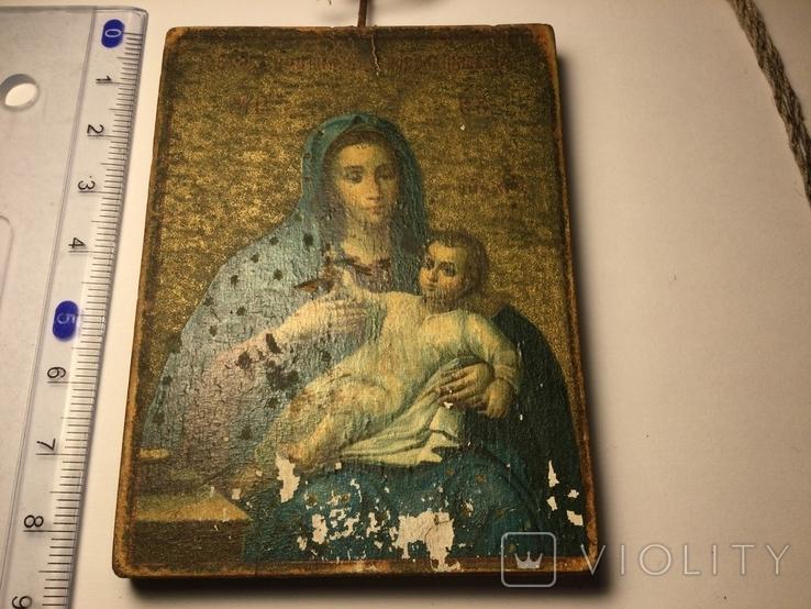 Икона Божией Матери (Феофания) 1895 год, фото №2