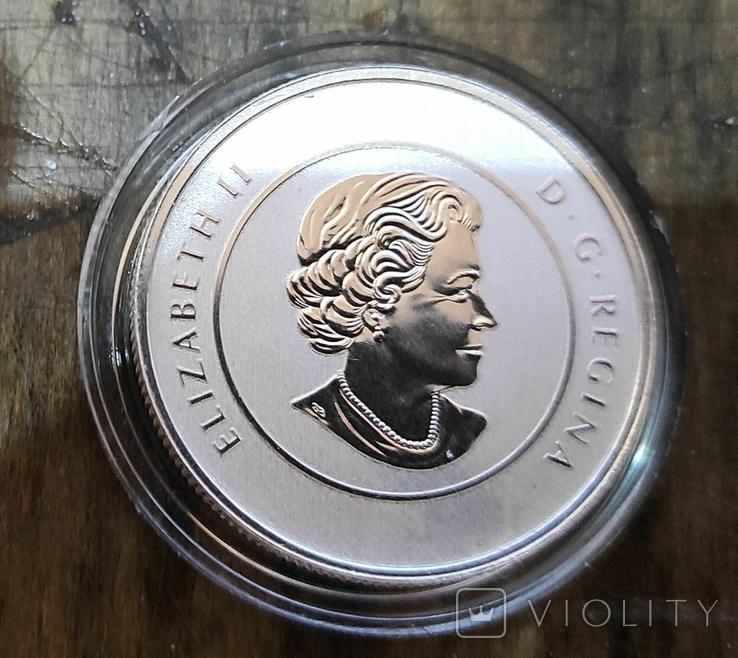 Канада 20 долларов 2013 г.: Серебро Эксклюзив, фото №3