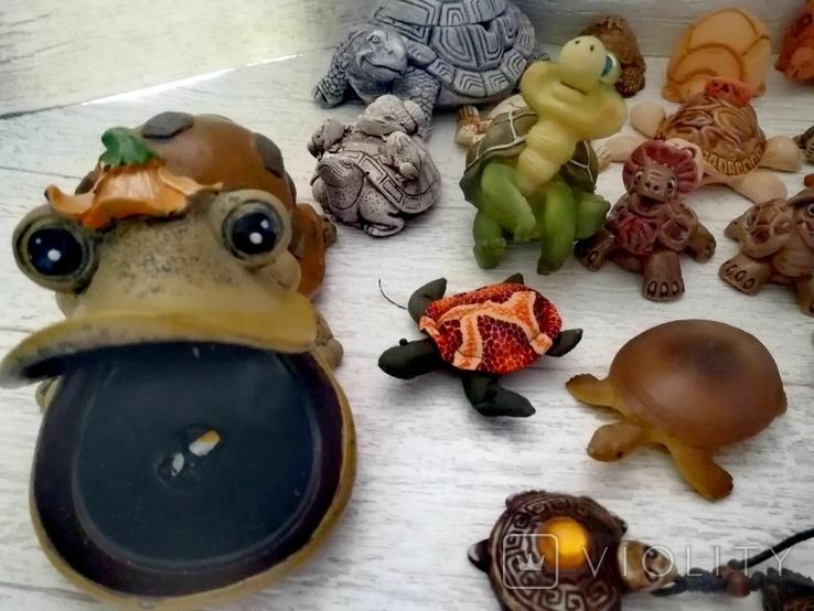 Коллекция черепашек, черепашка. 25штук одним лотом., фото №4
