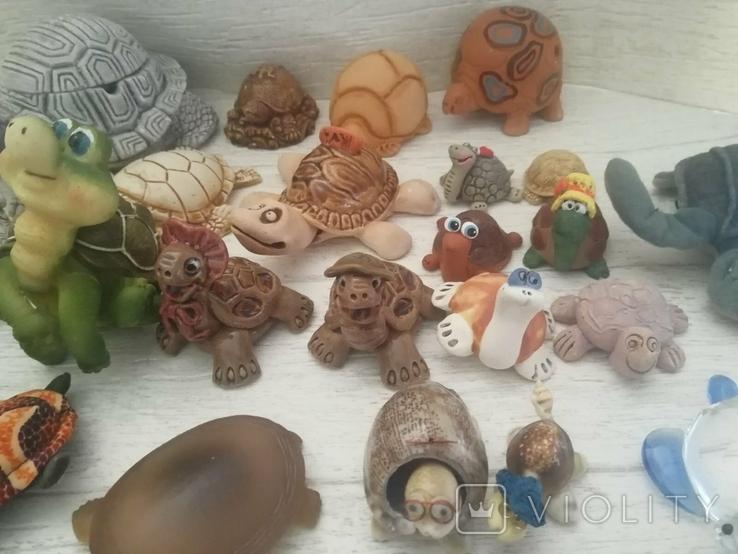 Коллекция черепашек, черепашка. 25штук одним лотом., фото №7