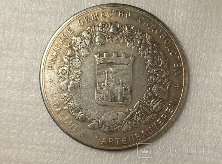 Медаль 1876 Рижское общество садоводства 55 мм R12копия, фото №3