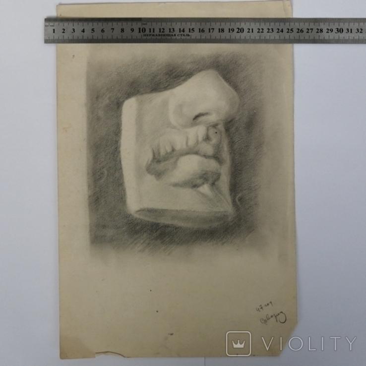 Картина карандашом 1947 года, Суворова Всеволода Леонидовича, фото №5