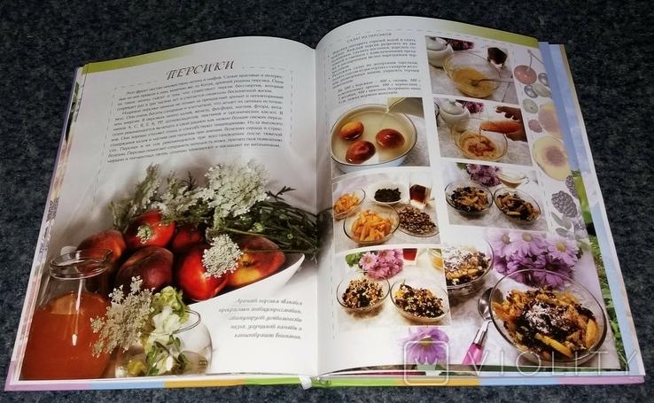 Четыре сезона. Кулинария круглый год. Фрукты и ягоды. 2013 г., фото №5