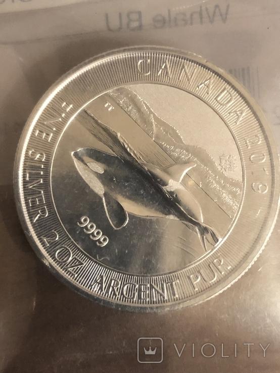 Касатка. Orca Whale. 2019. 2 унції срібла., фото №7