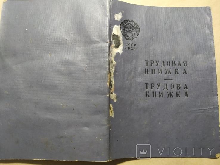Док чистый трудовая книжка СССР, фото №2