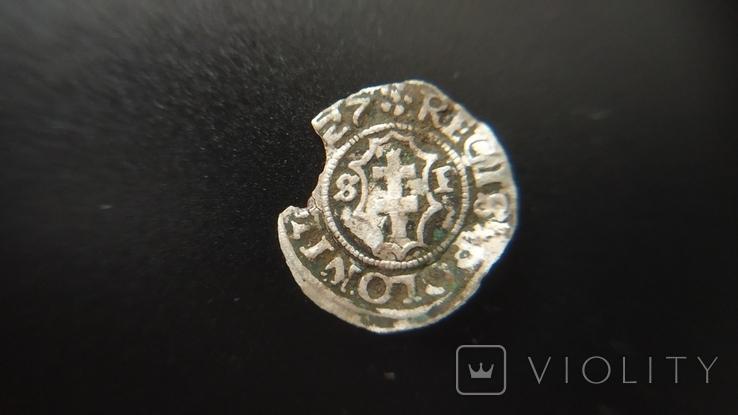 Сігізмунд I старий 1557, фото №2