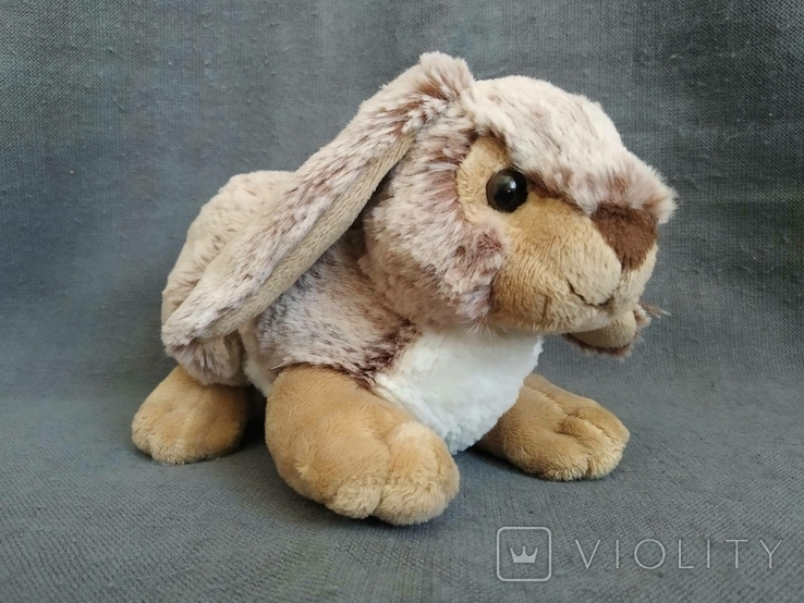 Кролик Индонезия, фото №4