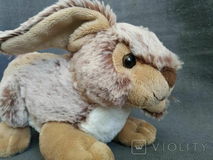 Кролик Индонезия, фото №10