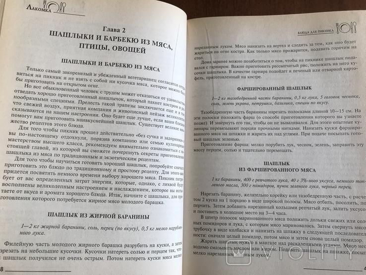 2001 Рецепты блюд для пикника, фото №5