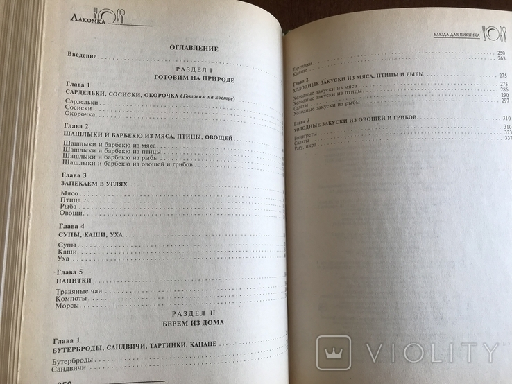 2001 Рецепты блюд для пикника, фото №12