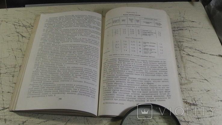 Биохимические основы коньячного производства., фото №7