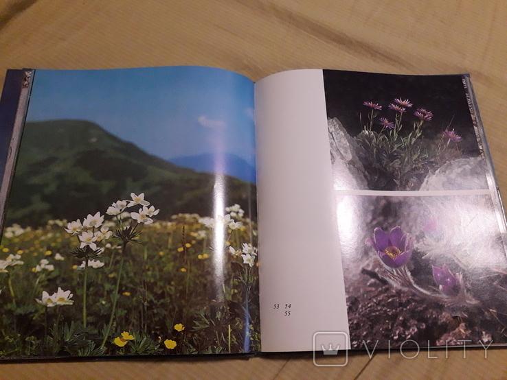 Turiec (Турец) фотоальбом с текстом на чешском, русском и английском языках 1977г, фото №5