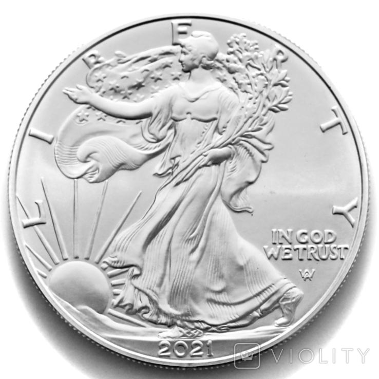 1 доллар. 2021. Американский орел. США (серебро 999, вес 31,1 г), фото №3